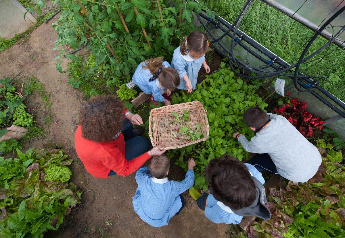 250 scuole e 21.000 studenti contro spreco e crisi climatica: Slow Food dedica a loro e alle centinaia di volontari e insegnanti dell'Orto in Condotta la vittoria alle #EWWRAwards. Ripartiamo dall'ORTO a settembre, per educare a un futuro migliore a partire dalla terra. #SERR https://t.co/Ou1NZ2gbm0