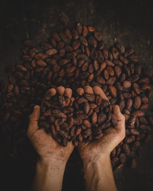 We all love it, but where exactly did chocolate come from? Learn more about the history of one of the world's most well-known commodities here: #gourmetchocolate #chocolatiers #chocolatelovers #chocolategifts  #darkchocolate #chocolatetruffles https://t.co/C0nuWGkuRO https://t.co/ASOTOIKPEE