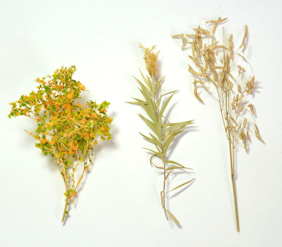 More scenic botanicals! This release focuses on specialty grasses that simulate things like wheat and other crops, and a few other items!  See them all here: https://t.co/21CF3kDfiq  #minipainting #miniaturepainting #Warmongers #miniatures #Warhammer #40k #wh40k #aos https://t.co/7GMwLsCYZQ