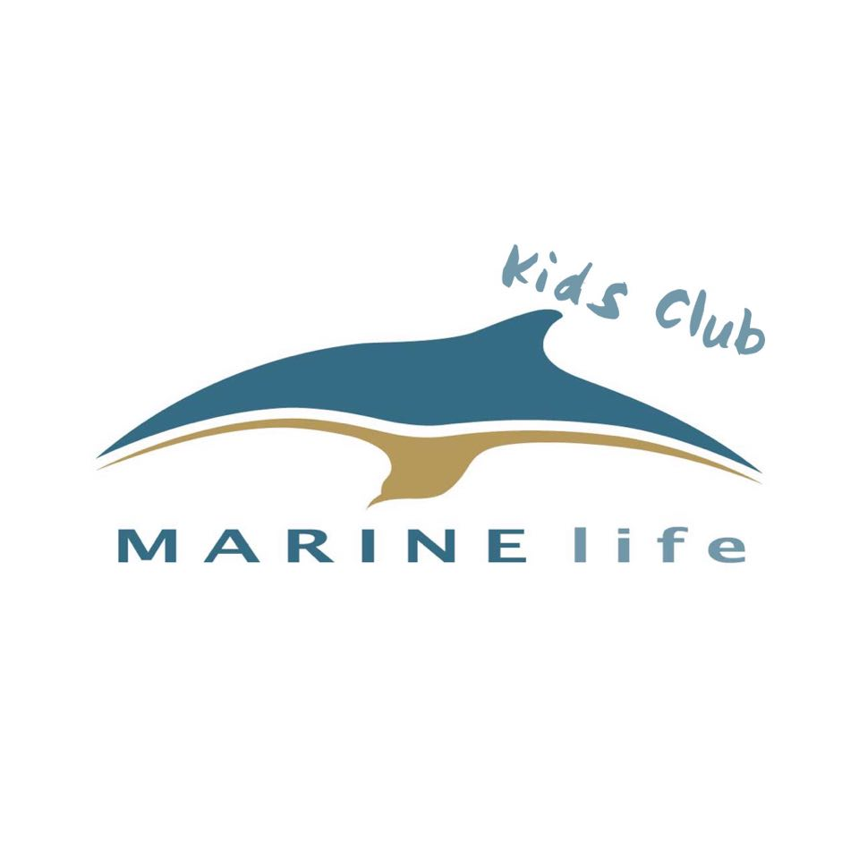 You can now sign up to our new Kids Club using this Google form! forms.gle/3hHJ2Tj32oPtV1… #marinelife #education #marineconservation #charity