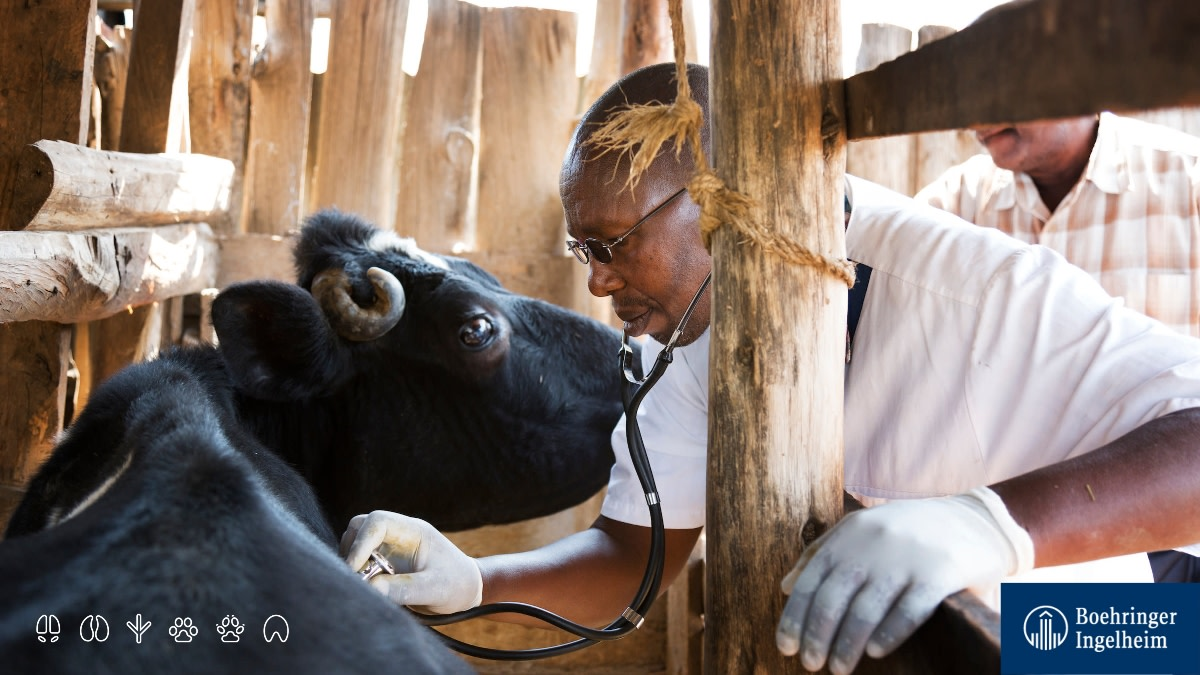 How about some facts in a nutshell? 😎 👉 Five emerging diseases appear each year, 3-4 of them will be zoonotic.  👉 This means our relationship with animals is more important than ever. 👉 Protecting animals ultimately keeps us healthy.  👉 #AnimalHealth matters. @Health4Animals https://t.co/Uox7NxlWsL