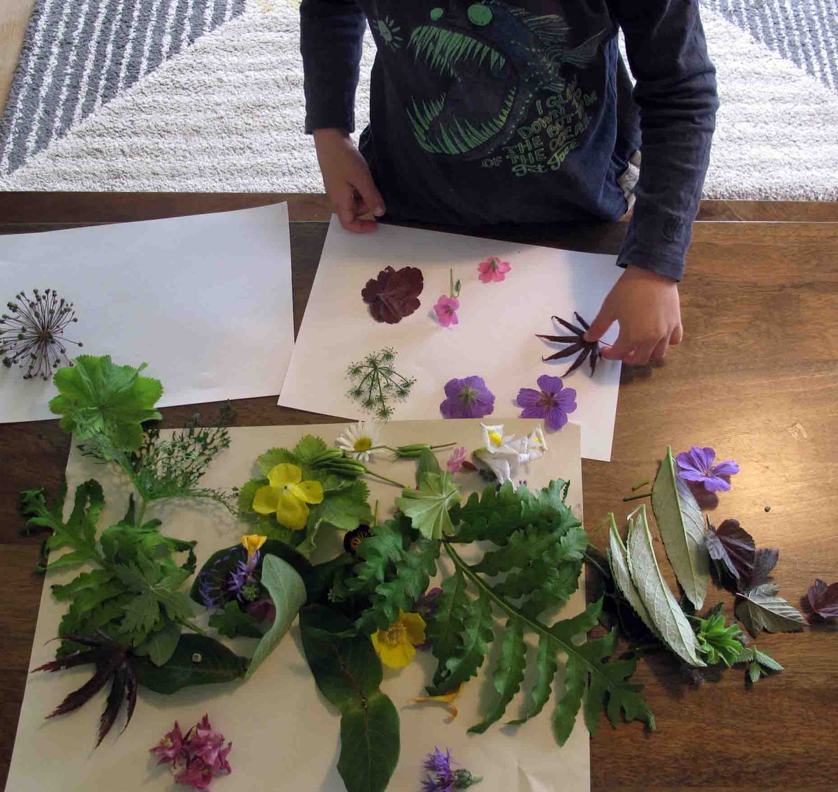 We're exploring the #ChildrensArtWeek nature theme today with these flower pattern ideas for wee ones Find instructions here: https://t.co/1PS0wxigN7  #DCAmakes @UoDPsychology #PlayAtHome #createtogether https://t.co/CY3yoJZAfd