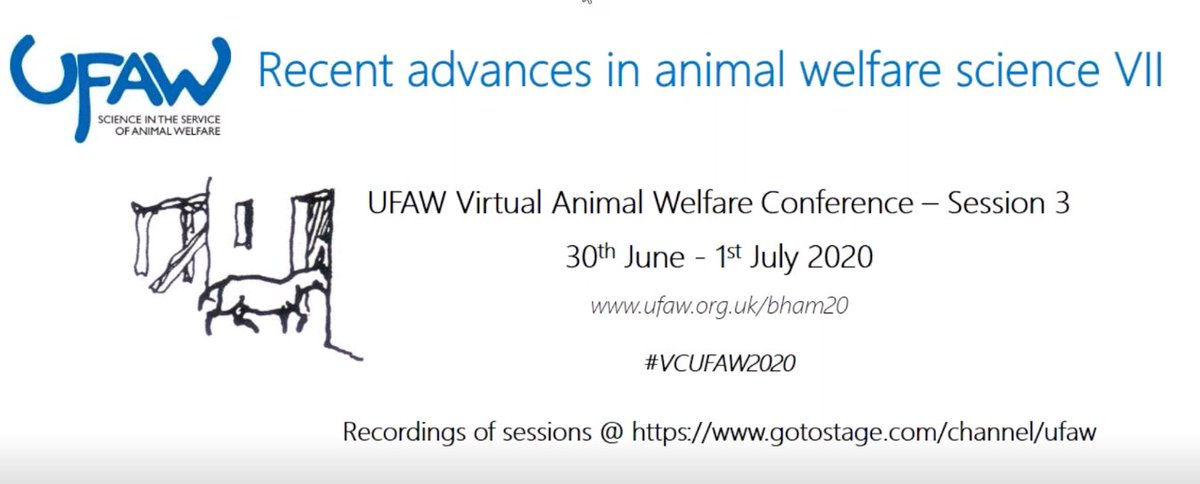 Thanks to @UFAW_1926 for making available online the recordings of their first virtual conference #VCUFAW2020! A sprained ankle means I can now watch some very interesting presentations that I had missed! #silverlinings https://t.co/IBfVHgIBHD