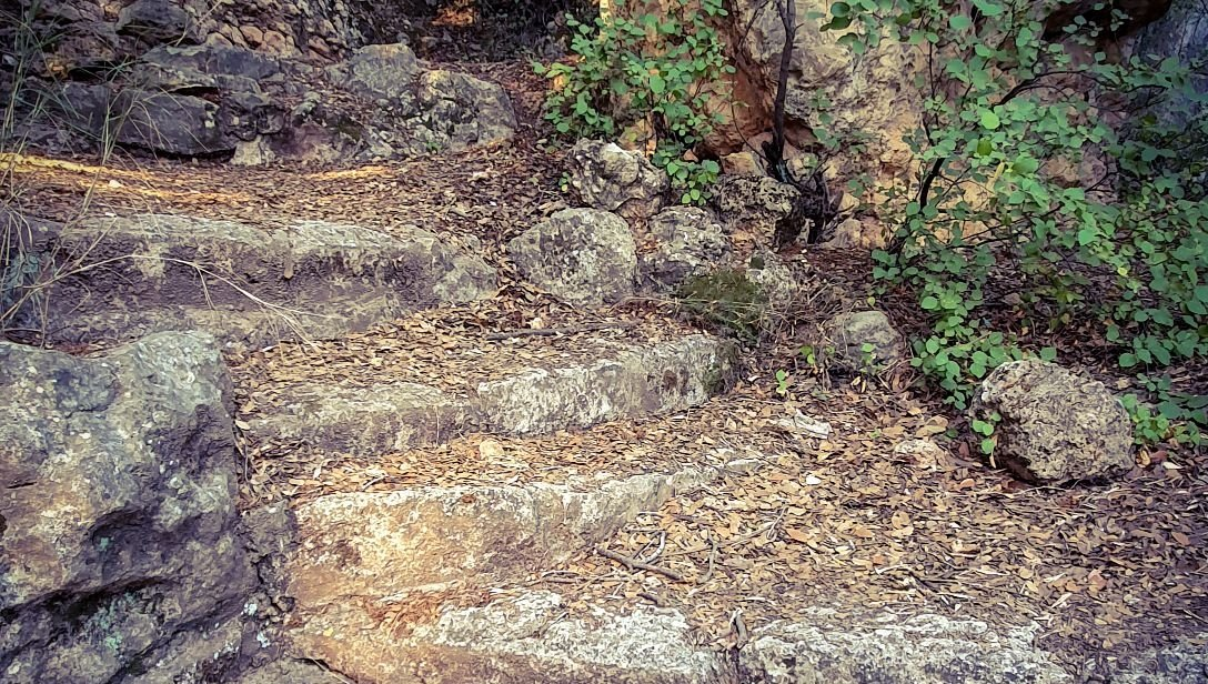Stone steps covered with fallen leaves  #mobilephotography #photooftheday #photo #nature #NATURE_WORLD #leaves #fall #steps #autumnvibes  @ThePhotoHour @LensAreLive @YourAwesomePicspic.twitter.com/FOZAi6sL5l