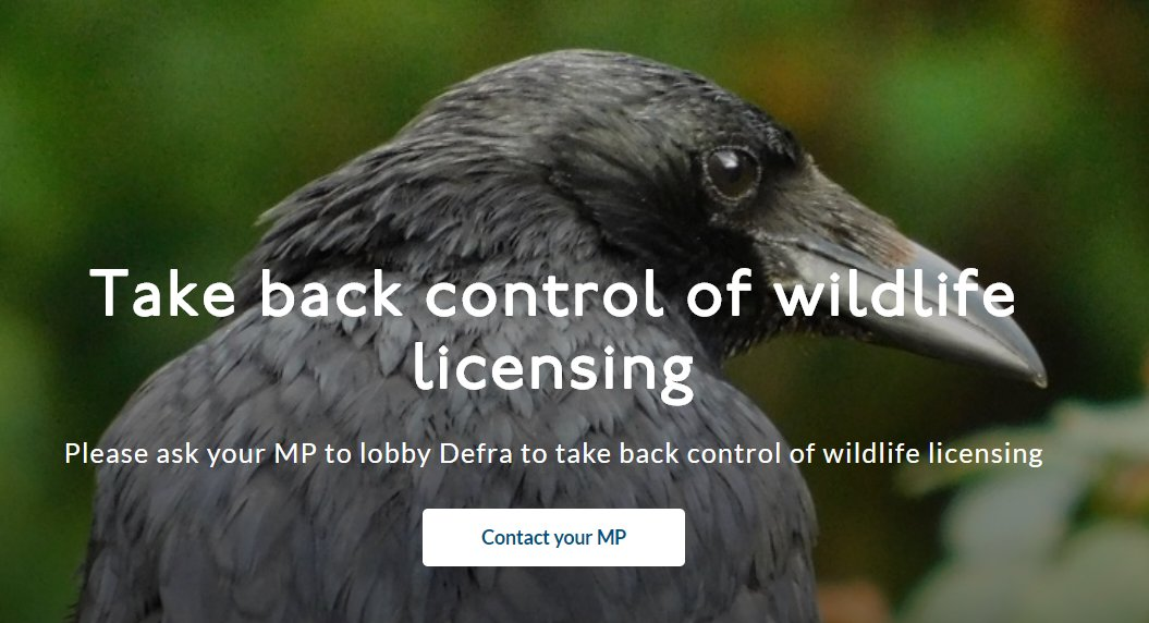 The current chaos surrounding wildlife licensing is having catastrophic consequences for wildlife and livestock. DEFRA should now take back control of all wildlife licensing to prevent further problems. Sign the e-lobby now, it takes seconds: bit.ly/38pmPGn