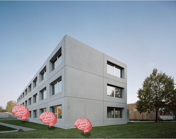 SimTech Building, three brains (not to scale) are arranged in the ponzo illusion