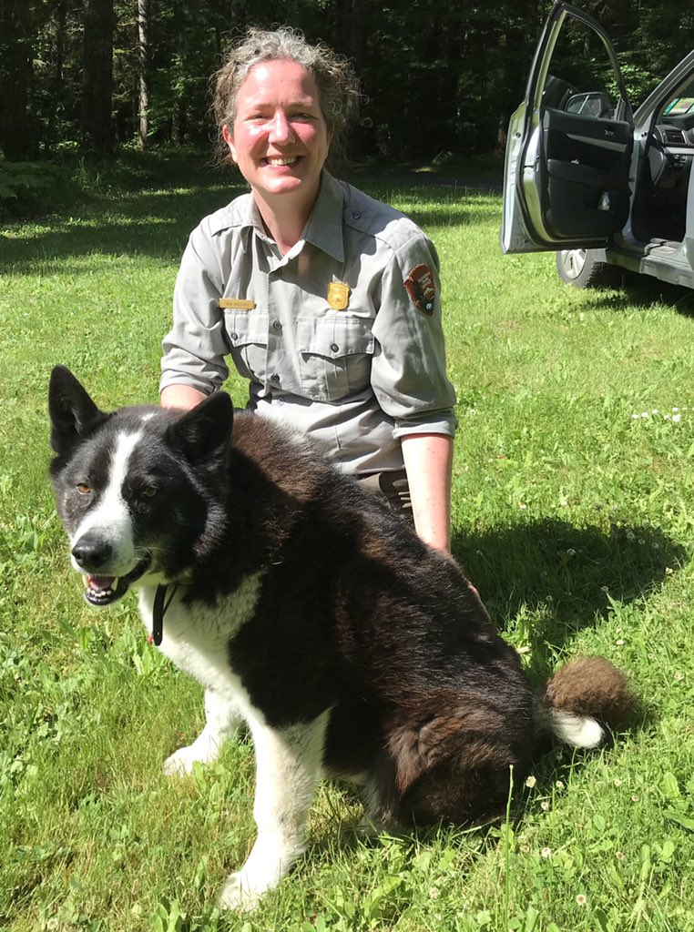 Can we give a shout out to all of the #workingdogs out there? This is Spencer, a @WDFW Karelian bear dog who helps teach habituated bears that humans are their friends but not their buddies. #KeepWildlifeWild https://t.co/xc8svy1X4P