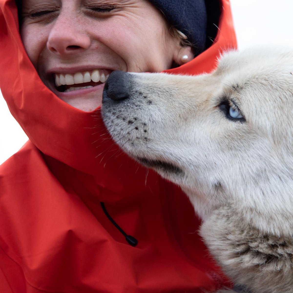 A Year Ago- Svalbard History has proven that the best type of animal to have by your side during snowstorms and extreme cold weather is human's best friends- the dog😊 Thank you to @whale_nerd for capturing our bonding moments! . @natgeoeducation @lindbladexp https://t.co/C0bQAneLeQ