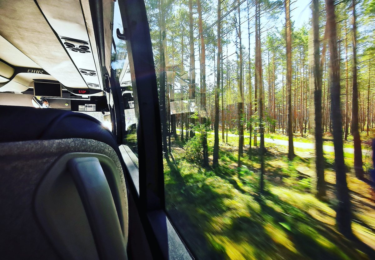 Not a bad view from the back seat either 😍 Seeing #Norway by bus. Photo Marie Peyre #transport #greentravel  @vygruppen @visitnorway 🌲🌲🌲 https://t.co/ruhHUfetQ3