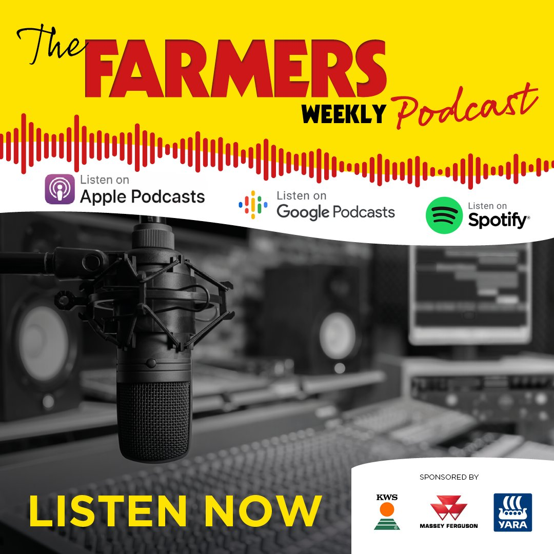Latest @FarmersWeekly Podcast: Have your say on ELMs, cabbage stem flea beetle, worthless wool, farm investment, market prices, & drive-thru strawberries.  Listen in full on:   Spotify: https://t.co/0Th1FMQtLu  Apple: https://t.co/024EC9ASj6  & FWi: https://t.co/aCHl4sN2VY https://t.co/p62lA0VcGC