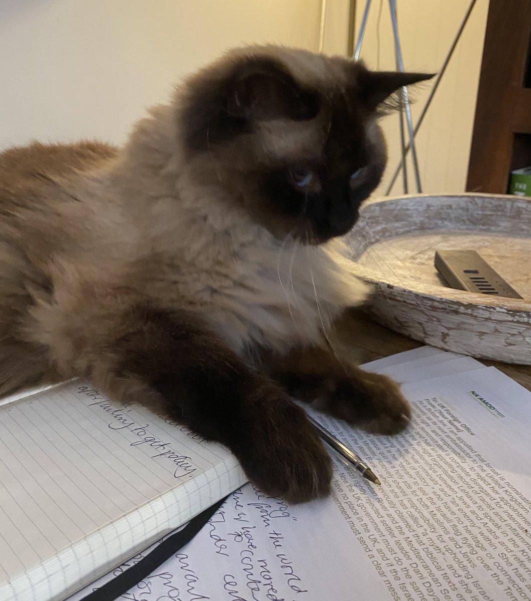 @Number10cat I shall tek notes