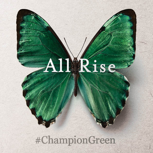 The Gate proudly supports #ChampionGreen, bringing creators, businesses and communities together to help our country emerge stronger. Play your part - pledge to championgreen.ie