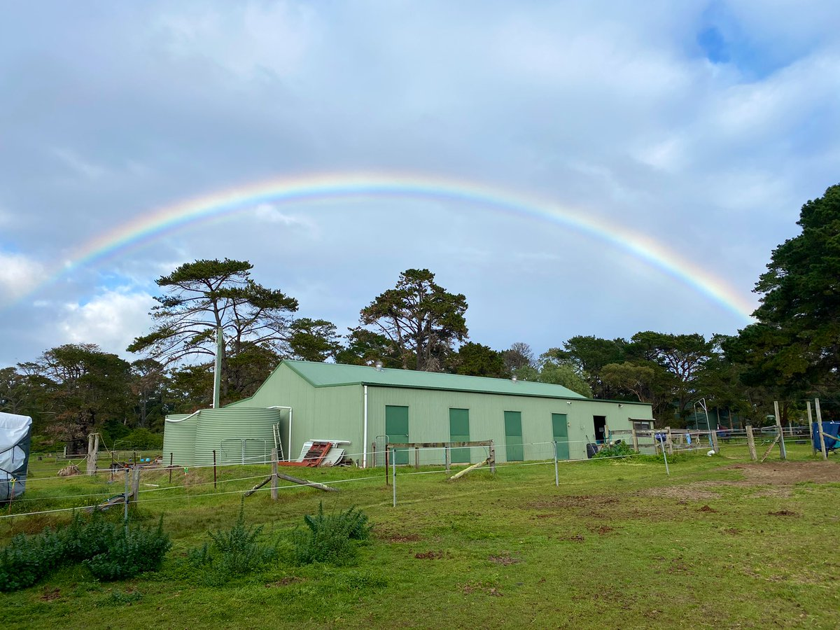 Feeding all the horses this morning, and I look up to see a rainbow framing the little green shed. It's nice here, even when it rains.