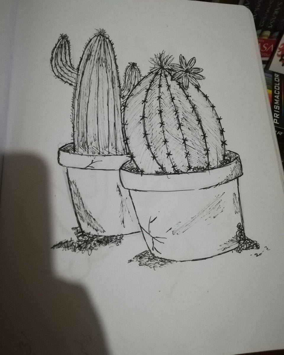 Un dibujo rápido de unos lindos captus oh intento de ellos, iniciando a lápiz y terminando de dibujarlo a lapicero de tinta  #dibujotraditional #lapiz #dibujorandom #dibujosalapiz #dibujosalapiceropic.twitter.com/gRd2fpeCtA