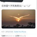 運気が上がりそう!?日本に不死鳥が現れた画像!