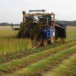 Image for the Tweet beginning: Chantiers de récolte – Planifier