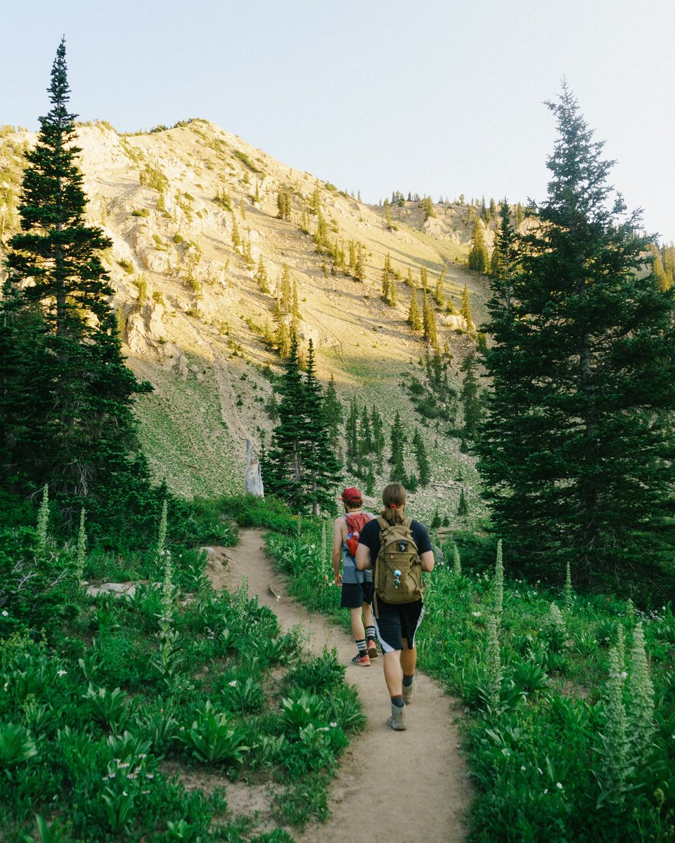Get out into the green 🌲 and don't forget to pack a boost before you go ⚡  Summer is officially upon us and a ton of adventures await... where are you going this weekend? ⬇️  #rungum #runtheday #runsquad #getoutside #thegreatoutdoors #explore #wanderlust #weekendwarriors https://t.co/lS3etKIUya
