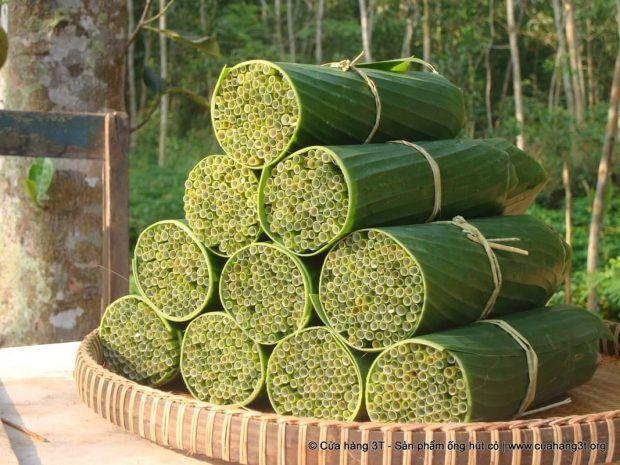Pajitas vegetales, pajitas biodegradables de hierba para luchar contra el plástico https://t.co/KwmWDFFTa4 https://t.co/pCM5CPMmEx