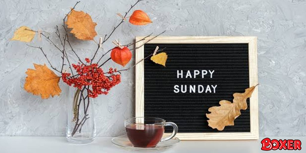 Happy Sunday! How are you and your family spending the day today? https://t.co/HpcROMg0Ae