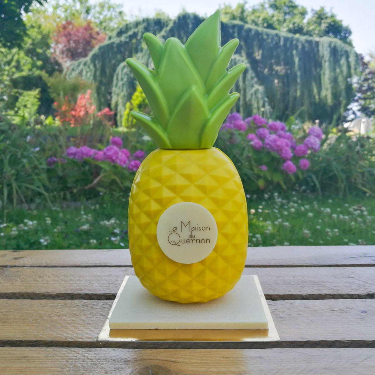 Sur mon blog, découvrez la magnifique collection estivale de La @MaisonDuQuernon 🍍 Au programme : ananas, cactus et combi en chocolat 🍫 #angers #summer #chocolat #artisan https://t.co/vREoF603sH