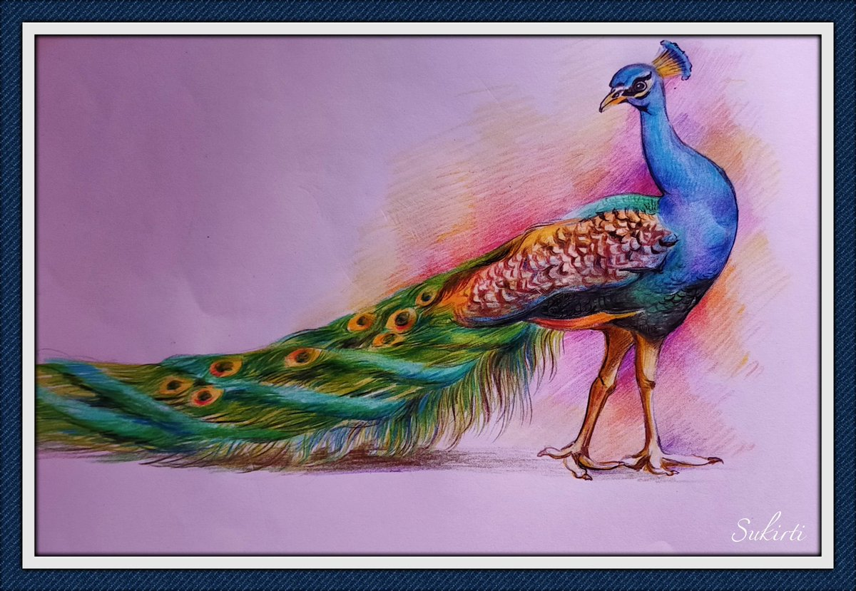 10 Indian birds' painting in 10 days.Kindly go through the thread and explore the amazingly beautiful creatures of GodAnd don't forget to let me know which one did you like the most  #naturelover #IndianBirds #beautifulnature  1.Peacock,the national bird  Medium-colour pencil pic.twitter.com/odrNkKFpW0  by Gracious କୀର୍ତ୍ତି