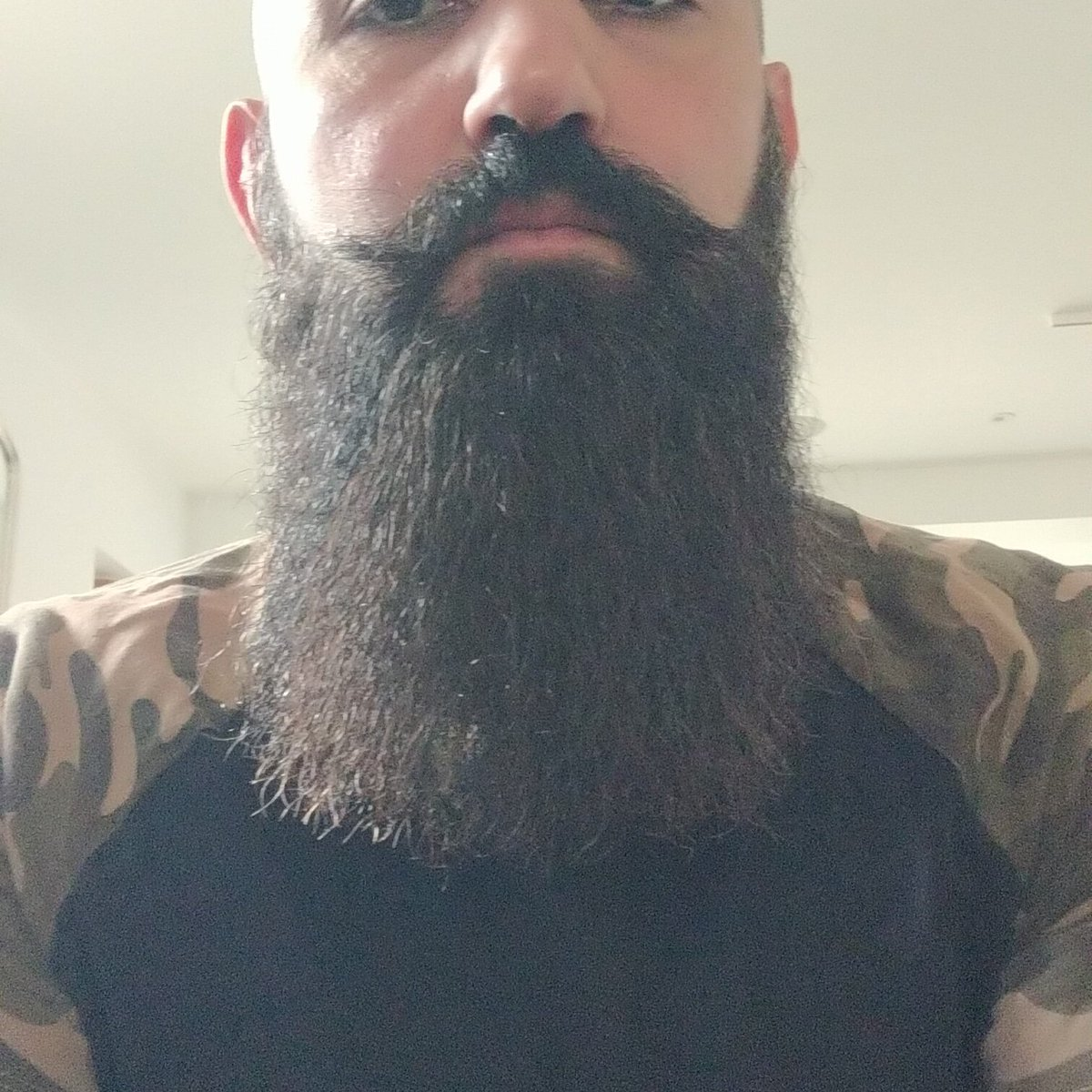 This is my dream. Am I getting there? #bearded pic.twitter.com/c81KvpZUIr