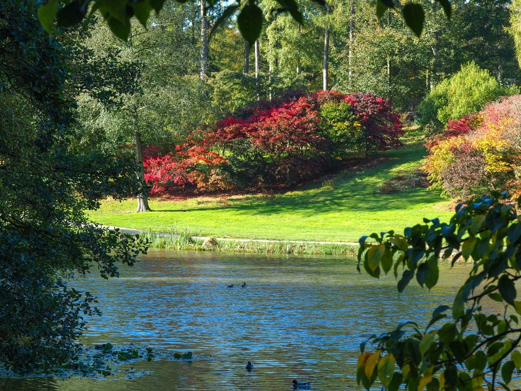 Autumn view in the Yorkshire Arboretum, England Image available at https://thoughtsofdawn.com/downloads/view-over-the-lake/… #autumn #photography #Yorkshirepic.twitter.com/lba8nxFhdw