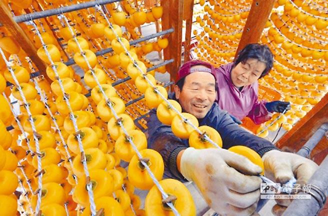 台湾新竹の「柿餅」は丸柿をザルに並べたり紐で吊るして作りはしますが、それでも9月以降ですね〜