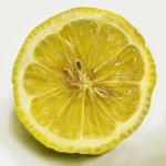 どっちがどっち!?描いたレモンと撮ったレモンの見分けがつかない!
