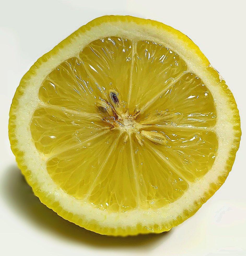 描いたレモンと撮ったレモン