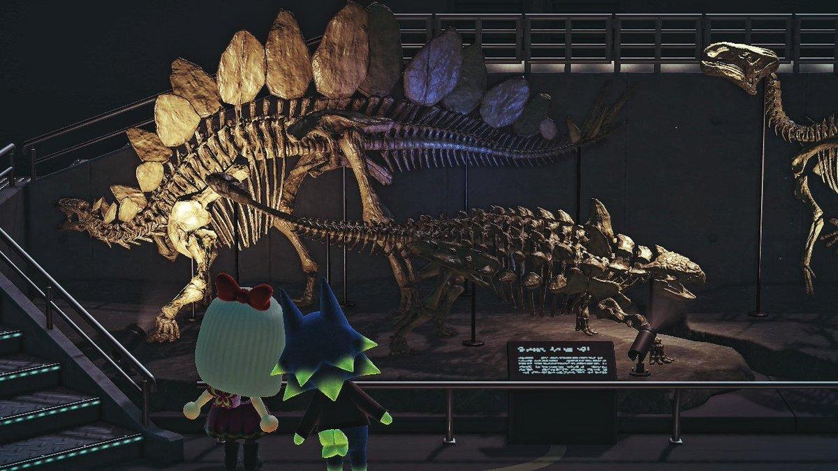 コンプリート あつ したら 化石 森