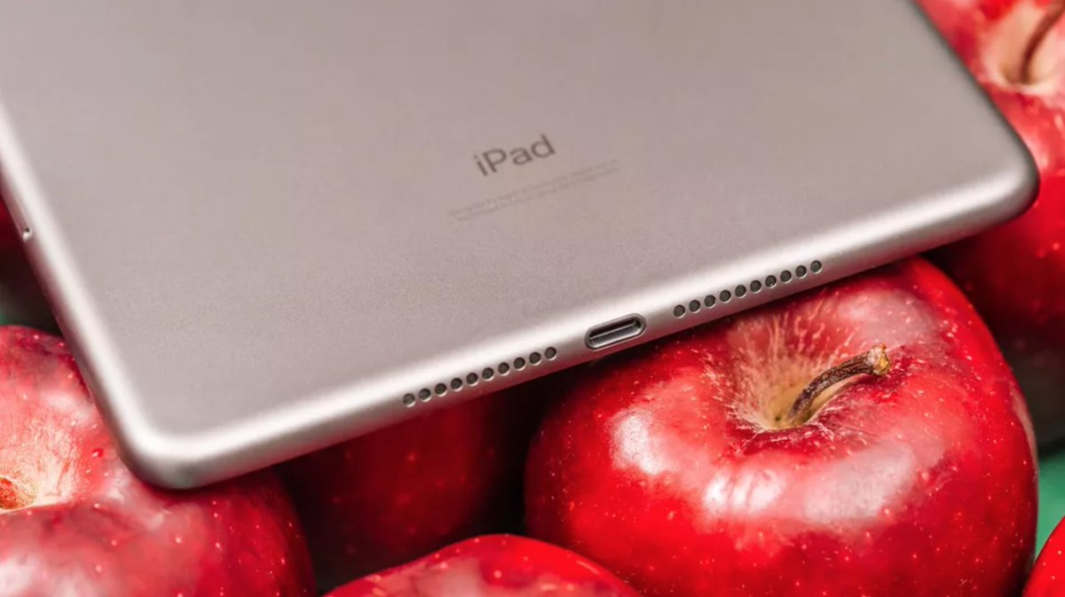 Apple to launch 10.8-inch iPad this year, 8.5-inch iPad mini next year, report claims