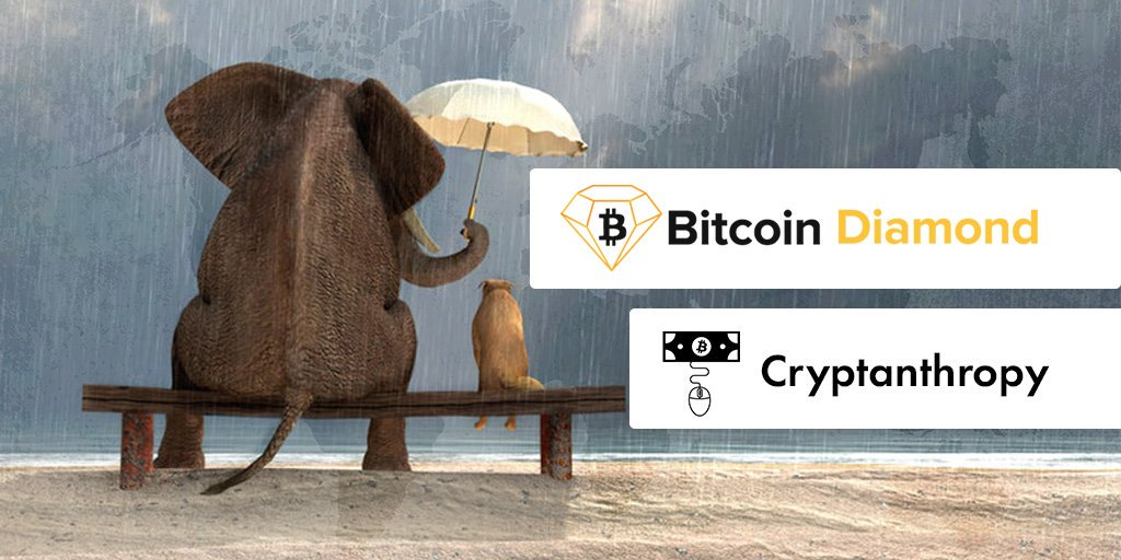 Crypto enthusiasts can now use Bitcoin Diamond (BCD) to fund random acts of kindness through Canadian online donation platform Cryptanthropy, which recently added the coin to its roster of supported #cryptocurrencies . Read more: newswire.com/news/bitcoin-d…