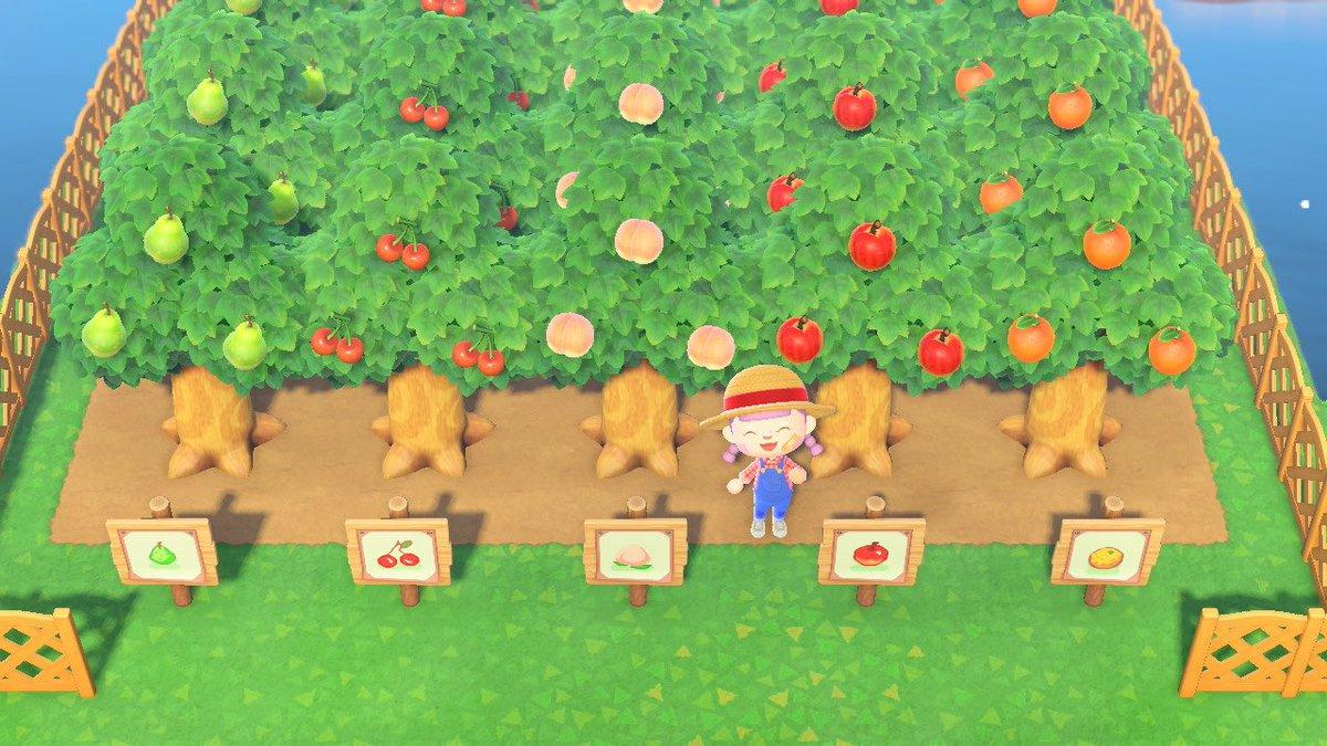 果樹園 レイアウト あつ森