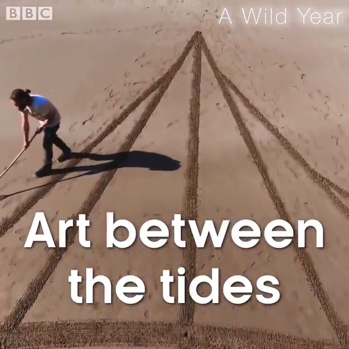 This beach artist is so relaxing to watch. 😍 #AWildYear