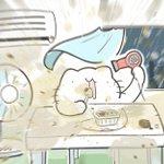 信玄餅を食べるのがへたくそな猫ちゃん!扇風機の近くで食べるた結果