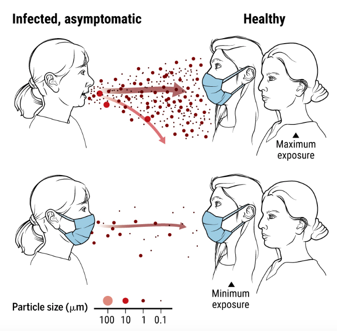 Given the lengthy presymptomatic phase and asymptomatic infections, a new #SciMagPerspective argues that wearing well-fitted masks, especially in enclosed indoor spaces, is important to help prevent #SARSCoV2 transmission. https://t.co/aNFshLN7Al @ScienceVisuals https://t.co/LijaoUh3xk