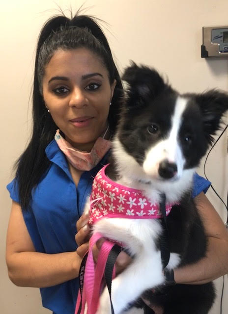 We Are Open And Caring For Your Pets!!!  Happy Monday Morning!!! #philadelphia #veterinary #openforbusiness #dogsoftwitter #instadog #pets #photooftheday #MondayMorning  http://www.veterinariannephiladelphia.com/coronavirus-and-your-pet/…pic.twitter.com/ihmQcZ7sJO