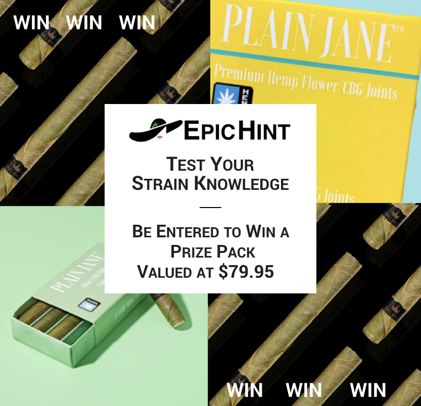 Need a fun Monday break? Test your cannabis strain knowledge and be entered to win $79.95 in #CBD, #CBG, and more from Plain Jane.   It takes 3 minutes! Play, learn, and be entered to win >> https://bit.ly/2ARE3zS.  #epichint  #budtender #budtenderlife #budtendertraining #mjbizpic.twitter.com/vu1YIfQKTc