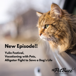Image for the Tweet beginning: NEW EPISODE of @ThePetBuzz as