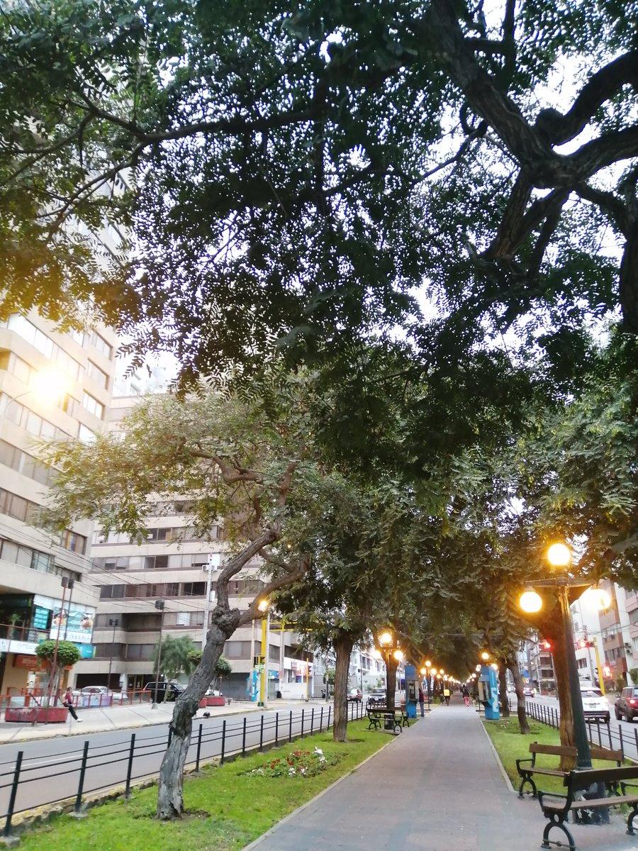 """""""Habíamos olvidado que era feriado, pero las calles se encargaron de recordarnoslo"""" Tarde de Invierno por Pardo. #miraflores #lima  pic.twitter.com/Psp2XHzTc5"""