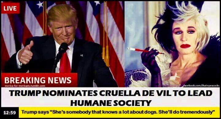 "IN ""OTHER""  BREAKING  TWITTER  NEWS   #EVIL#tRUmp nominates #CruellaDeVil  to lead the #HumaneSociety pic.twitter.com/Zbl0jLb0J3"