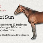Image for the Tweet beginning: 🇫🇷🏆🥇 Another Winner for Zambezi Sun