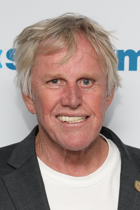 Happy 76th Birthday to actor, Gary Busey!