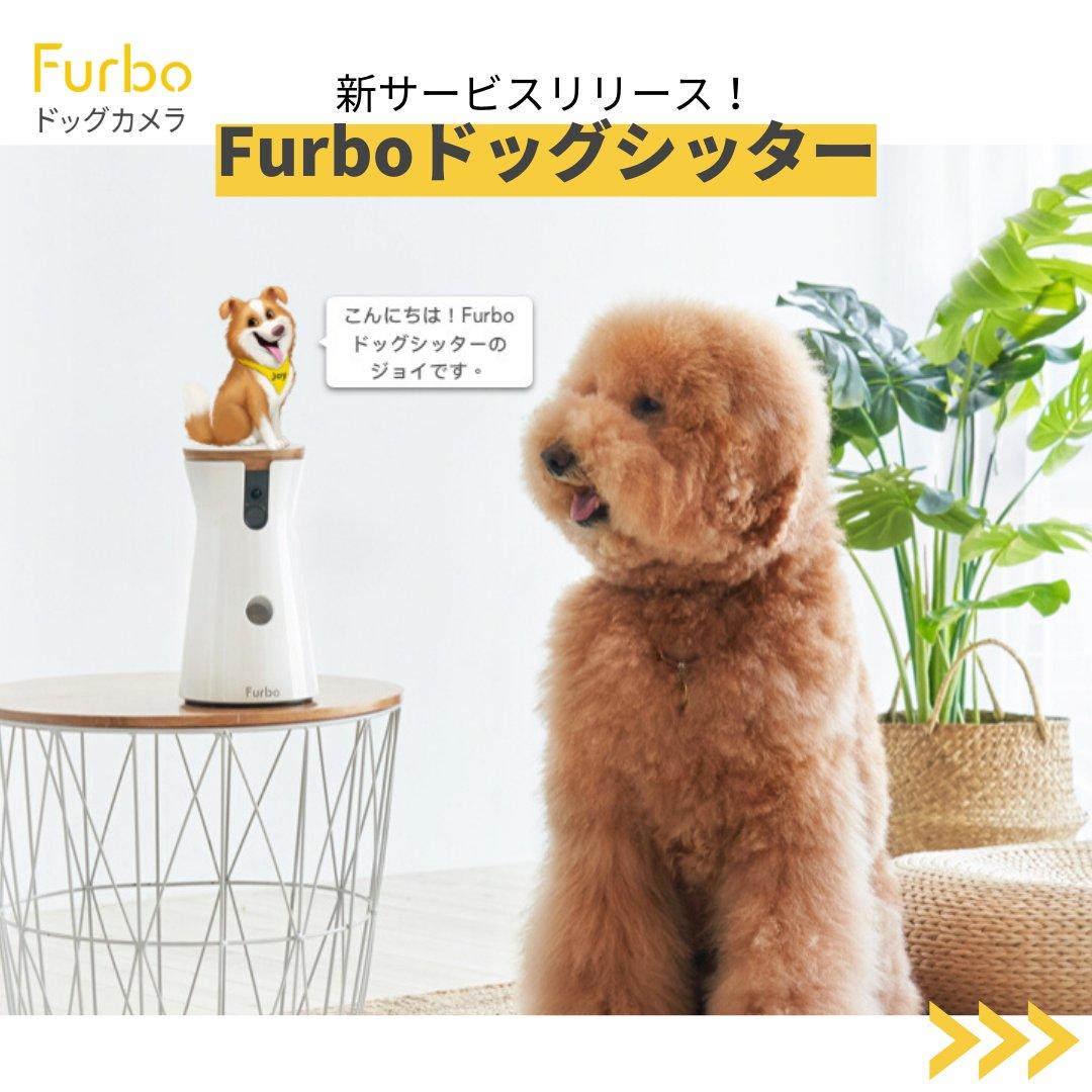 """Furbo(ファーボ )ドッグカメラ 公式 در توییتر """"📣重 大 発 表📣 本日より新サービス【Furboドッグシッター】をリリース致します!👏👏 Furboドッグシッターは、あなたに代わって愛犬を見守り、「安全」や「健康」にまつわる愛犬のリスクを察知➡️通知する、日本初のAI ..."""