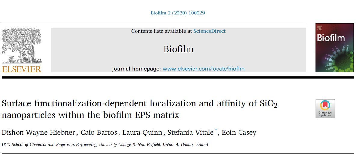 More great interdisciplinary teamwork from my lab on the materials-biology interface. Latest from our @scienceirel  project on nanoparticle-biofilm interactions. Free to read at https://t.co/MuuHBwQGJF     #openaccess  #BelieveInScience #LoveIrishResearch #biofilm https://t.co/88Ow77f0wk
