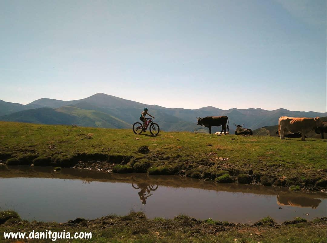 Continuamos con las rutas guiadas en #biciselectricas #Ezcaray  paraíso del #mtb  https://t.co/HvxRs7Lvr8 #sierradelademanda #lariojaapetece #trekking #naturaleza #montaña #ebikes #guiasdemontaña #bicicletas #escalada #senderismo #btt #specialized #turbolevo #alquilerdebicicletas https://t.co/as1IR16rtz