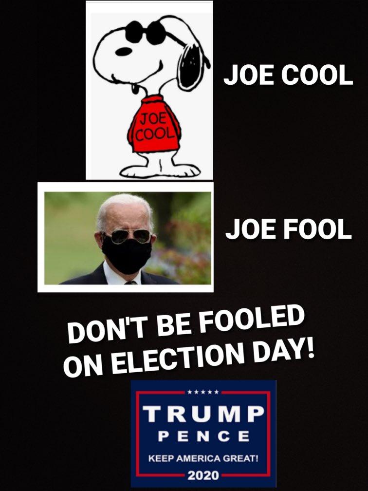 Vote .@realDonaldTrump in November🗳 #KAG2020