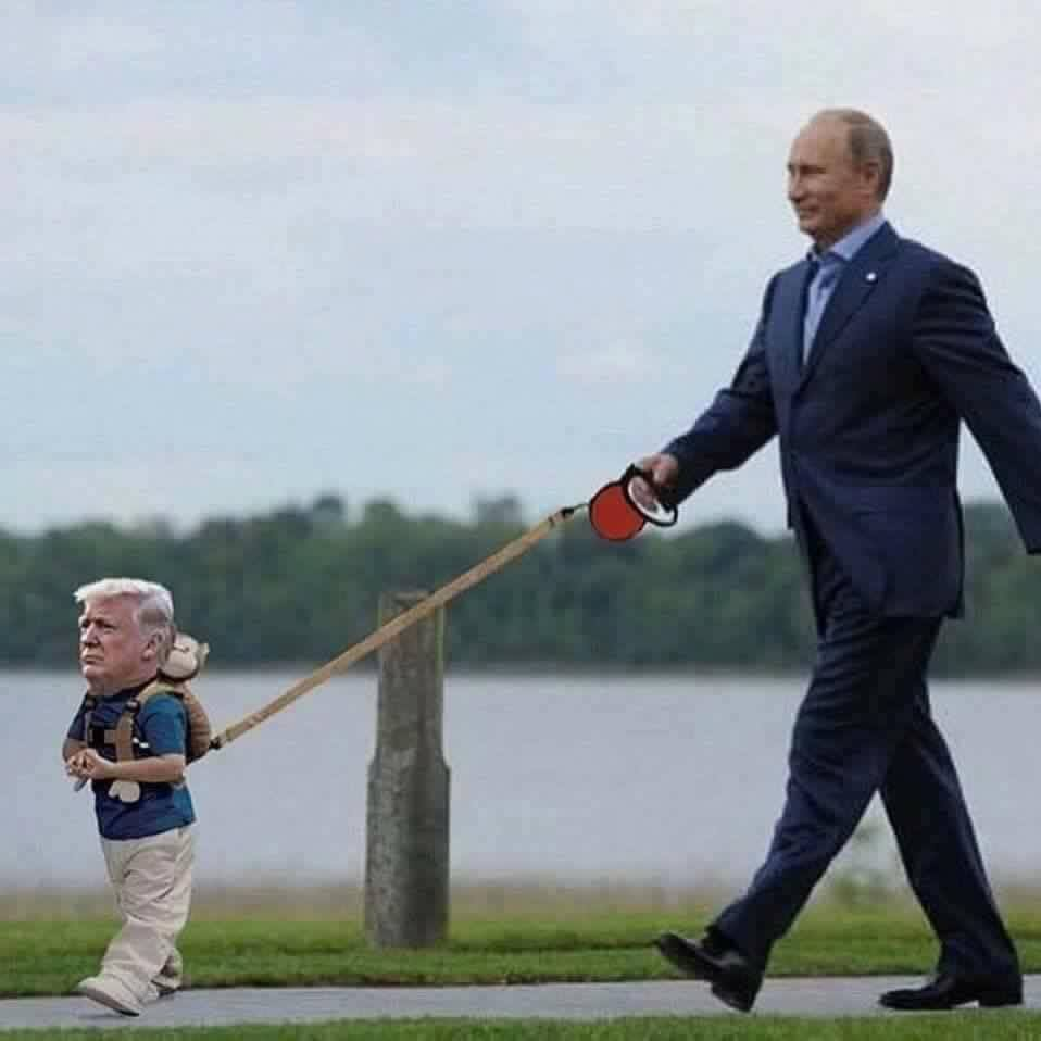 """Putin then commands, """"Now Donny, don't reach down for that poopy, there. We don't want to smell bad for our 2020 election, do we?"""" ..and he gives li'l donny a treat. https://t.co/DlqOCTgtZQ"""