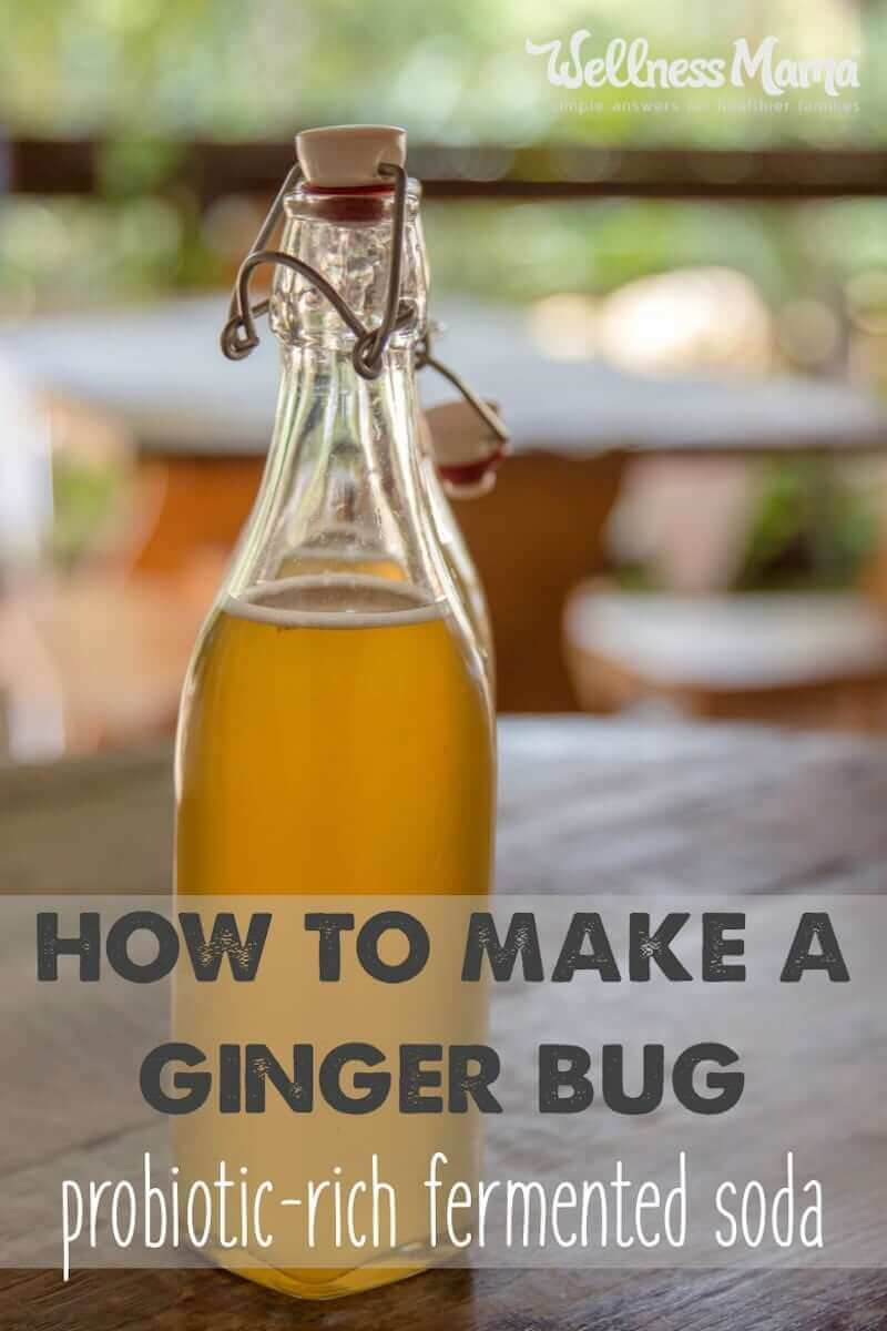 How to Make a Ginger Bug #gingerbeer #fermentedfoods If you aren't familiar with naturally fermented beverages, you might be asking what the heck a ginger bug is and why you should make one…http://bit.ly/2ErI2D8pic.twitter.com/LZuAHryzyx